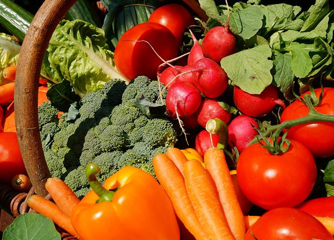 تسويق وتوريد المحاصيل الزراعية للسوق المحلي.7