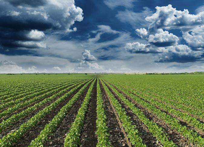 لاشراف الميداني للأراضي الزراعية.